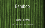 -Bamboo- by GiggsyBest