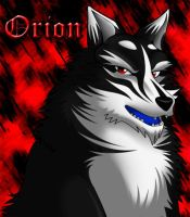 New Id + New Markings by OrionsSnarl