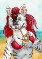 What about drink aceo by NikiKalat