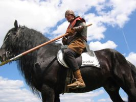 Medieval Rider by fengor