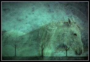 The White Horse by AelinQuan