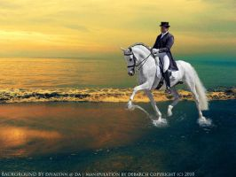 Dressage by debarch