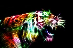 Angry Kitty Fractal by minimoo64