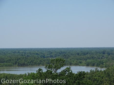 View from a forest ranger tower by GozerGozarian