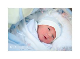 3 Days Old Malek 3 by AnubisGraph