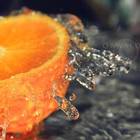 orange and silver by Orwald