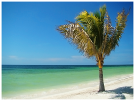 Everything You Can Think by TheEternalSpectator