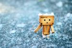 danbo on ice by majgreen