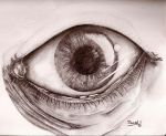 Eye WIP 2 by DanielNeeta
