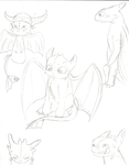 Toothless Sketches by Lilly-Chips96