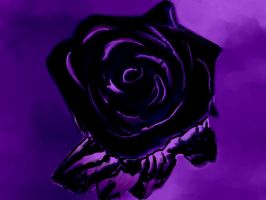 purple rose by blackrose64