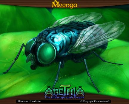 Moonga - Fly by moonga