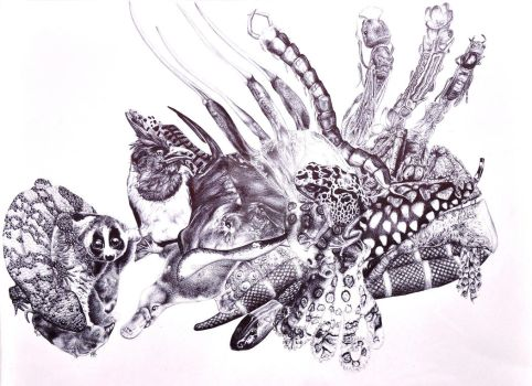 Deadly Mix of a Lionfish by poodleslistentokorn