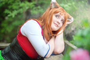 Horo - Spice and Wolf by fotoboerb