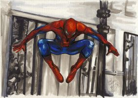 SpiderJump by PeaceMakerSama