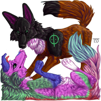 Eskwa Tag Commission by TheSolitarySandpiper