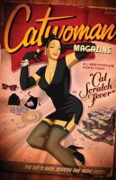 Des Taylor DC Bombshell Catwoman Issue 43 by DESPOP