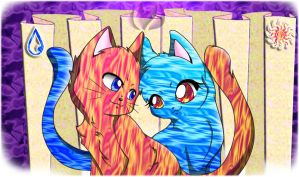 Fire and Water felines by raininess
