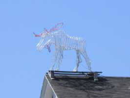 A Roof with a Moose by Santacanon