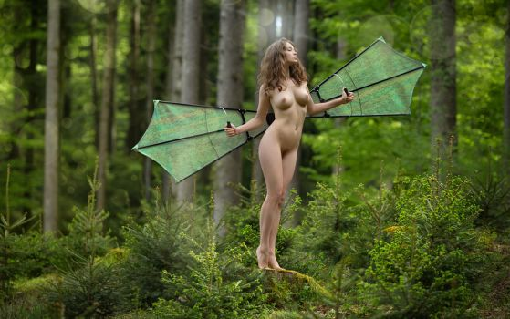 Dragonfly by fotodesign1