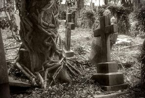 Highgate Cemetery - East IV by only-melancholy