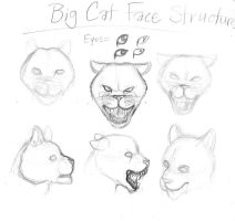 Big Cat Face by Dani-Claw