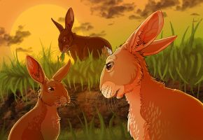 Watership Down - Dandelion and Hawkbit by LadyFiszi