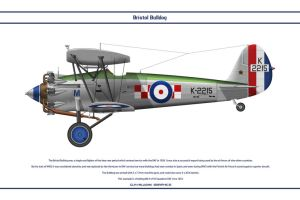 Bulldog GB 56 Sqn 2 by WS-Clave