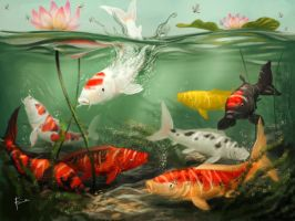 Happy Koi by Firnadi