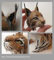 lynx, some details by thai-binturong