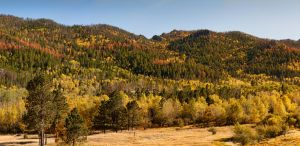 Autumn Panoramic by CharlieA-Photos
