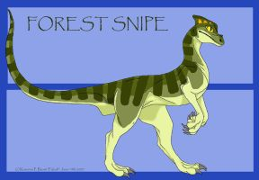Forest Snipe Species by Falcolf