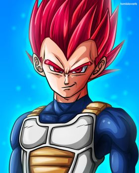 Vegeta - Super Saiyan God (Dragon Ball Super) by TomislavArtz