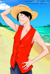 Luffy, the Pirate King by Cybiline