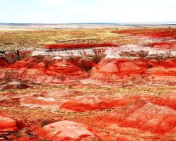 Painted Desert by IcecreamPopsickles