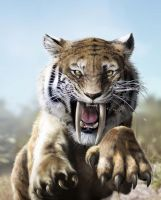 Siber tooth tiger by Jubran