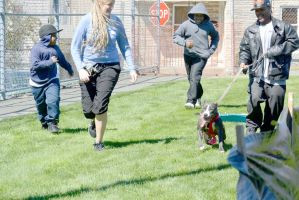 2014 Dog Festival, The Dog Sled Pull 2 by Miss-Tbones