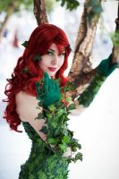 Batman: Poison Ivy by Naraku-Sippschaft