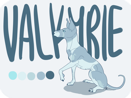 Valkyrie's Reference Sheet by tempest-dogs
