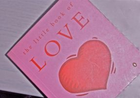 the little book of love by 9madgirl9