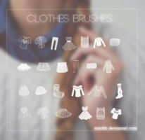 Clothes Brushes by miichb