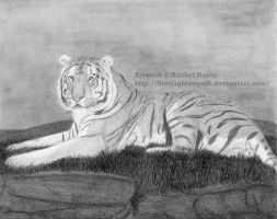 Tiger on a Mound by 8TwilightAngel8