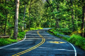 Winding Road by SharpPhotoStudio