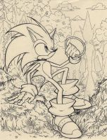 Sonic (2004) by LaNora-84