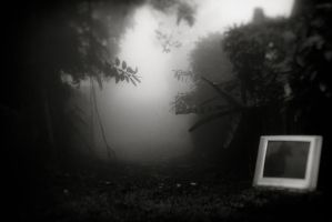 Hopelessly chasing ghosts through the fog... by AtEternitysGate