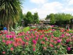 Chessington grounds by samanthanagel1567