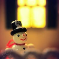 the happy snowman by kyokosphotos