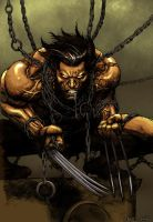 Wolverine CG by Jats