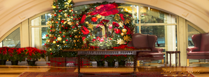 Holiday Wreth N Christmas Tree Facebook Cover by DanaHaynes