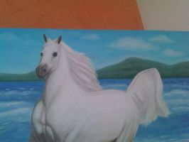 The Horse White 23 by eduaarti